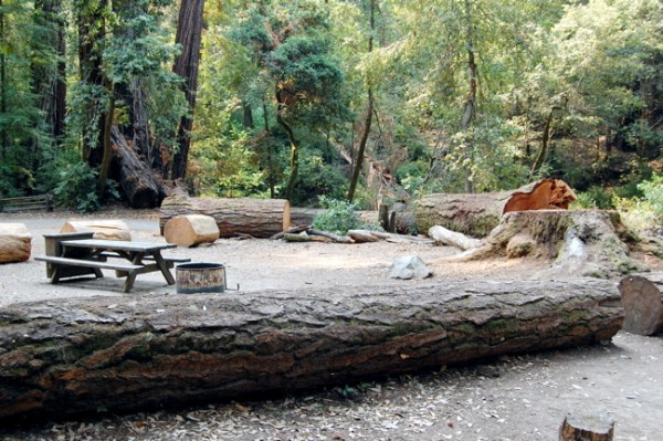 Big Basin Redwoods State Park camp site