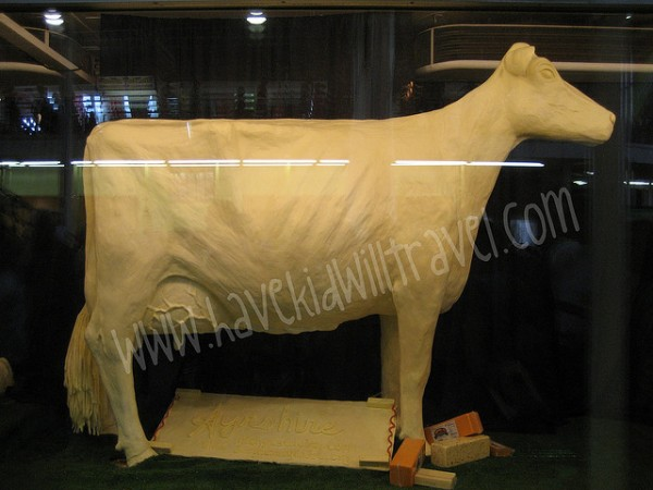 Iowa State Fair Butter Cow