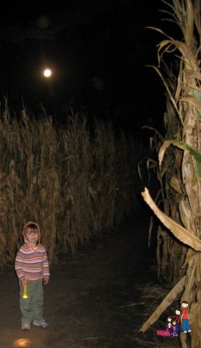 Night Time Corn Maze