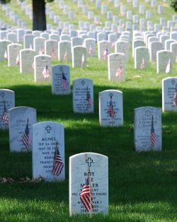 Graves at Arlington, Memorial Day