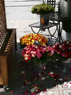 Sant Jordi's Day is the day of the rose in Barcelona
