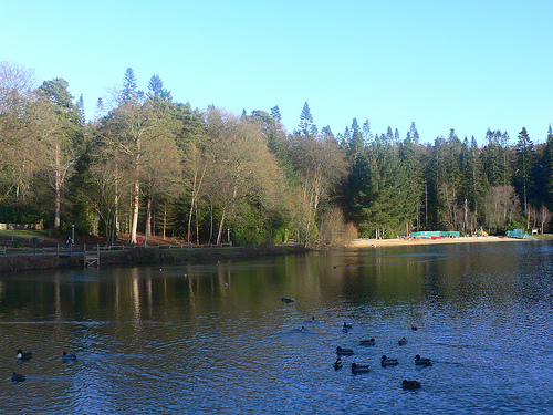 Lake at Center Parcs Longleat, UK