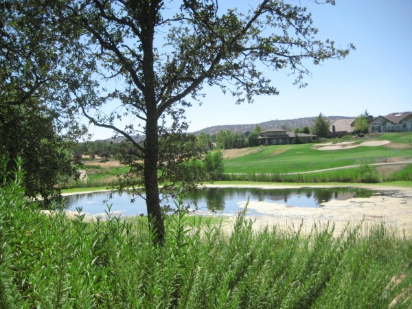 luxury, golf, saddle creek resort, copperopolis, nancy d. brown, travel