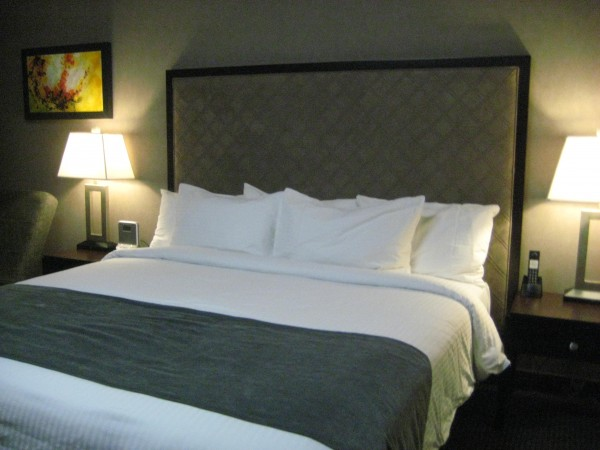 Acclaim hotel, calgary, alberta, lodging, Nancy D. Brown