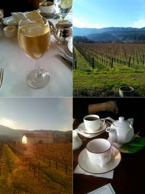 Napa Valley Wine Train: Have Wine, Will Travel