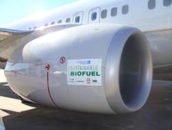 Aviation biofuel